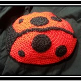 Lady Bug Cape